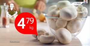 Российское эмбарго привело к снижению цен на шампиньон в Польше